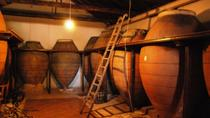 Small-Group Wine Tasting Day Trip from Madrid, Madrid, Wine Tasting & Winery Tours