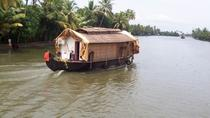 Private Backwater Cruise on a Houseboat and Shikara including Lunch, Kochi, Day Cruises