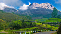 Private Custom Tour: Munnar local Sightseeing with guide, Munnar, Custom Private Tours