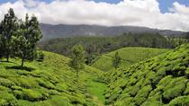 Private Custom Tour: Munnar tea estate Sightseeing with guide, Munnar, Custom Private Tours