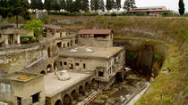 Private Excursion to Herculaneum from Naples or Sorrento, Naples, Half-day Tours