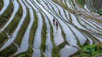 One-Day Longji Rice Terraced Fields and Minority Villages Tour (Mini Group of 6), Guilin, Day Trips