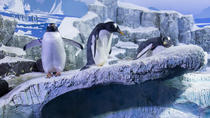 Evite las colas: entrada a SEA LIFE Constanza, Stuttgart, Attraction Tickets