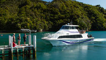 3 Hour Marlborough Sounds Delivery Cruise, Picton, Day Cruises