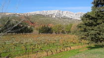 Cotes de Provence Wine Tour from Aix-en-Provence, エクス アン プロヴァンス