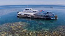 Cruise naar het Great Barrier Reef vanuit Cairns, Cairns & the Tropical North, Day Cruises