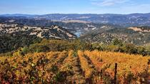 3-day Tour to Muir Woods, Napa Valley, and Sonoma County from San Francisco, San Francisco, ...
