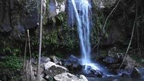 Mt Tamborine Waterfalls, Glow-worms, Rainforest Full Day Personal Tour, Gold Coast, 4WD, ATV & ...