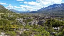 Skagway City and White Pass Summit Tour with Lunch, Skagway
