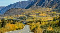 Skagway Yukon Discovery With Dog Cart Rides, Skagway, Ports of Call Tours