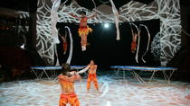 Shanghai Circus World: ERA Intersection of Time Acrobatics Show, Shanghai, null