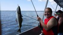 Halifax Deep Sea Fishing, Halifax, Day Cruises