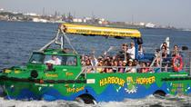Halifax Harbour Hopper Tour, ハリファックス