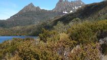 Cradle Mountain Sunrise Park Explorer, Tasmania, Day Trips