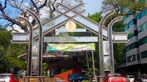 The Story of Kota Kinabalu Small Group Walking Tour with a Local Guide, Kota Kinabalu, City Tours