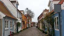 Aarhus Private Walking Tour, Aarhus, City Tours