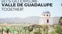 Family-Friendly Baja Wine and Food Adventure, Ensenada, 4WD, ATV & Off-Road Tours