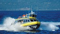 Whale-Watching Cruise from Vancouver to Victoria, Vancouver, Day Trips