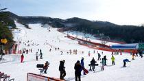 Cheapest Korea Ski Tour with the Dazzling Snow, Seoul, 4WD, ATV & Off-Road Tours