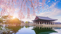 See the City Luxury to Grassroots, Seoul, Cultural Tours