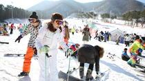 Ski Tour - Over night tour - Daily, Seoul, Night Tours