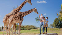 Evite las colas: entrada a Africam Safari, Mexico City, Attraction Tickets