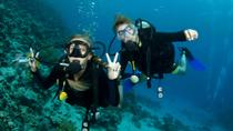 Huatulco Beginner or Certified Scuba Diving, Huatulco, Snorkeling
