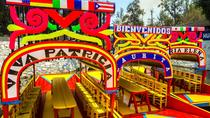Mexico City Tour with Canoe Ride: Xochimilco and Coyoacan, Mexico City, Half-day Tours
