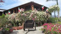 Puerto Vallarta Botanical Gardens and Lunch on Playa Las Gemelas, Puerto Vallarta, 4WD, ATV &...
