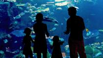 Skip the Line: Inbursa Aquarium in Mexico City, Mexico City, Literary, Art & Music Tours