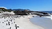 Peninsula Tour (Cape Point), Cape Town, Cultural Tours