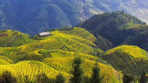 All-inclusive Private Day Tour to Longji Rice Terraces and Village, Guilin, Plantation Tours