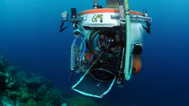 Explorers Dive, Curacao, Submarine Tours