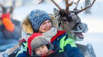 Visit a Sami village, get to know the culture and the history, Northern Sweden, Historical & ...