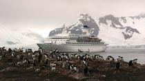 11-Day Antarctica Cruise from Punta Arenas: Antarctic Peninsula, South Shetland and the Antarctic ...