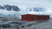 11-Day Antarctica Cruise from Ushuaia: Drake Passage, South Shetland Islands and the Antarctic ...