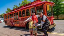 Trolley Tour of Salt Lake City, Salt Lake City, City Tours