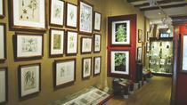 Hash, Marihuana & Hemp Museum of Amsterdam Admission Ticket, Amsterdam, Museum Tickets & Passes