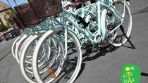 BIKE GEOCACHING, Strasbourg, Bike & Mountain Bike Tours