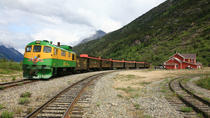 Skagway Shore Excursion: Bennett Train Journey on the White Pass Rail, スカグウェイ