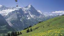 Inträde till First i Grindelwald, Grindelwald, Attraction Tickets