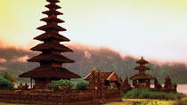 9-Day Best of Bali Tour: Ubud, Sidemen, Mt Batur, Lovina and Bedugul, Ubud, Full-day Tours