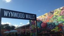 Wynwood Kunst und Graffiti Fahrradtour, Miami, Bike & Mountain Bike Tours