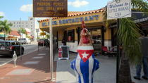 Little Havana Small-Group Walking Tour, Miami, Nature & Wildlife