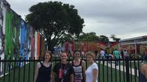 Wynwood Artwalk and Mural Tour, Miami, Literary, Art & Music Tours