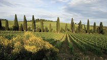 3-Day Tuscany and Cinque Terre Experience with Limoncino Tasting, Florence, Multi-day Tours