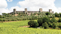 Chianti and Castle Tour, Siena, Wine Tasting & Winery Tours