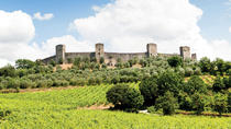 Chianti and Siena Half Day Tour with Dinner from Florence, Florence, Day Trips