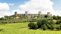 Chianti and Siena Half Day Tour with Dinner, Florence, Day Trips