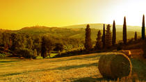 Chianti & SPA Experience with dinner, Florence, Day Spas